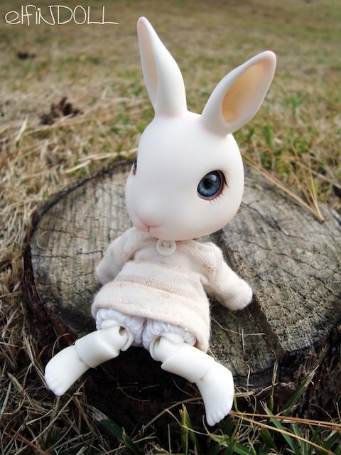 elfiN pet Bunny