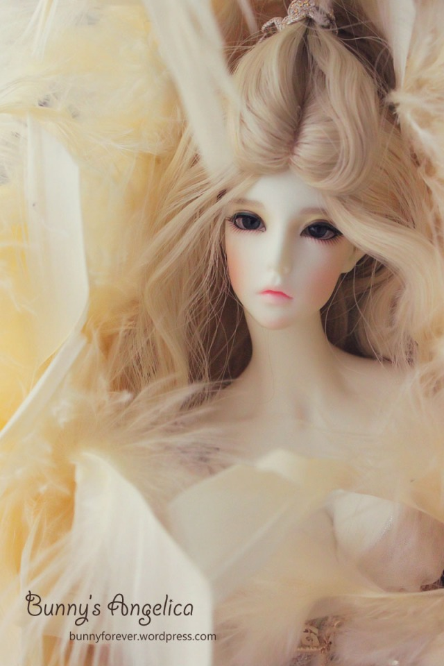 angelica, mua búp bê bjd ở vn, búp bê bjd đẹp, bup be bjd dep, ball jointed doll, bunny's angelica, mua bup be bjd o vn