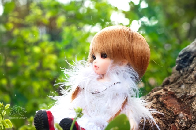 ball jointed doll, bjd doll, fairyland pukifee mio, búp bê khớp cầu, bup be khop cau, bjd doll, BJD vietnam, bjd việt nam